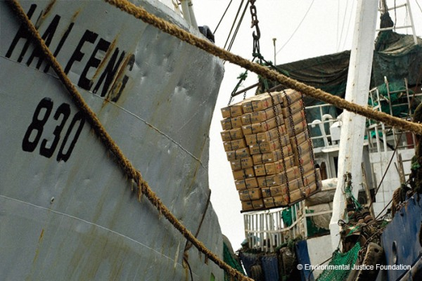 Fish being transshipped between two vessels in West Africa. © EJF