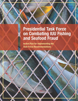 IUU-Fraud Task Force Action Plan-FINAL_Page_01_300